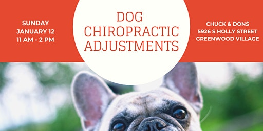 Dog Chiropractic Pop-Up Event