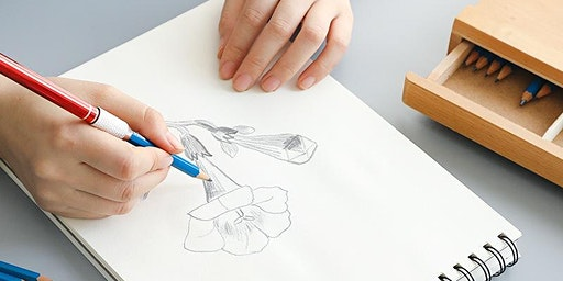 NEW! A New Perspective on Drawing