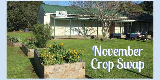 November Crop Swap at the Auckland Women's Centre in Grey Lynn