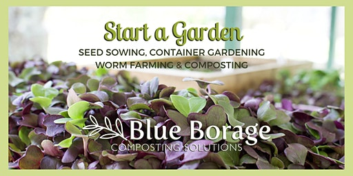 Blue Borage at the Fresh Finds Market