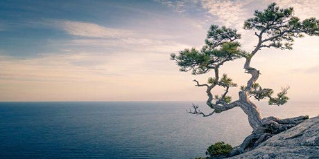 Japanese Mindfulness Meditation & Healing Workshops  | Calm in Busy Times tickets