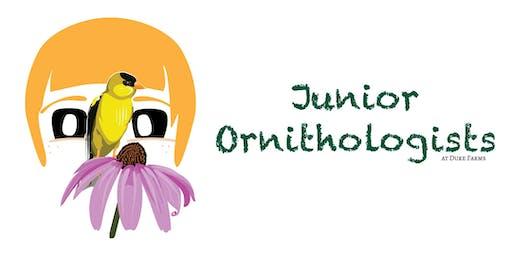 Junior Ornithologists 2020