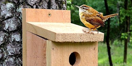 Bird Box Workshop -  Wrens