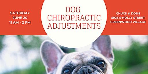 Dog Chiropractic Pop-Up Event