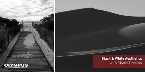 Black & White Aesthetics