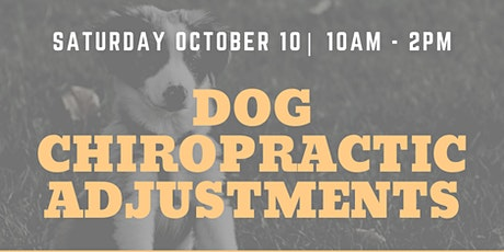 Dog Chiropractic Pop-Up Event tickets