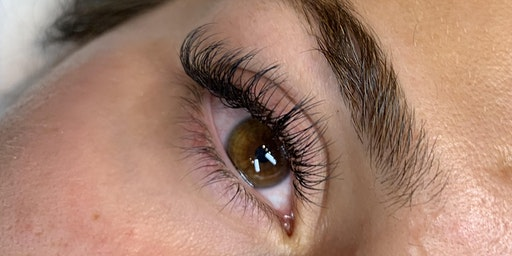 Classic Eyelash Extension Introductory Course