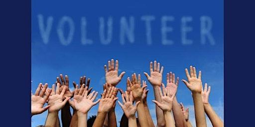 Volunteer - Kūlolo Workshop