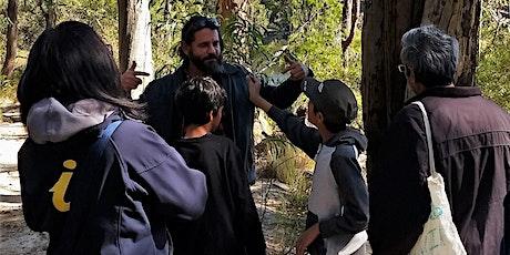 Warami Mittigar- Aboriginal Cultural Walk SUNDAY'S tickets