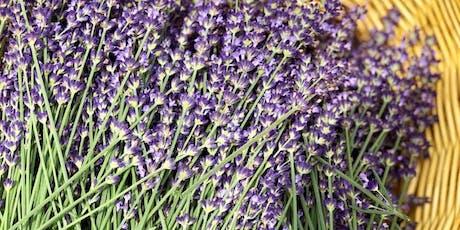 Lavender Holiday Treats with Karen Macdonald tickets