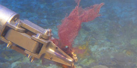 Discoveries from the Deep: New Limu from Hawaii's Mesophotic Reefs tickets