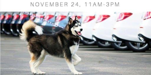 Thanksgiving Dog Adoption Event!