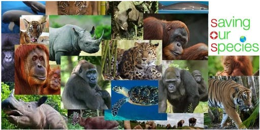 Little Juniors S.O.S Camp (Save our Species) (For age 5-8 years old)