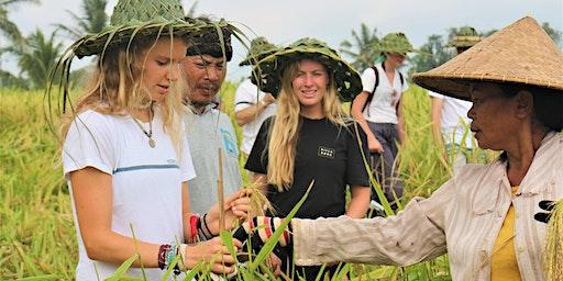 Organic Farming and Community Organic Movement