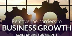 Scaling Up Business Growth and Team Accountability Workshop - Half Day