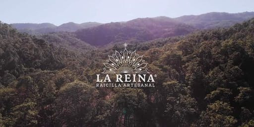 Raicilla La Reina First Anniversary! (in 10 Days)