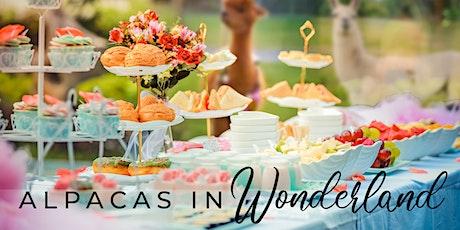 Alpacas in Wonderland - The High Tea Experience tickets