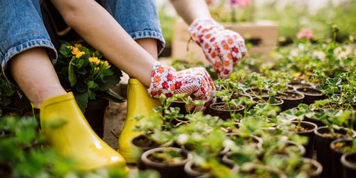 Designing your garden for all seasons