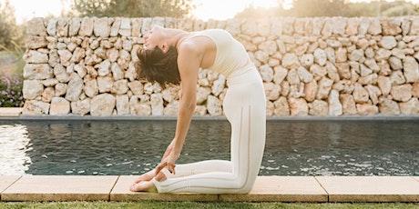 Vinyasa yoga entradas