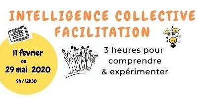 Intelligence Collective & Facilitation : Pour Quoi ? Comment ?
