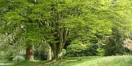 Designing with Trees and Shrubs Bowood tickets