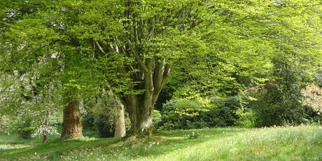 Designing with Trees and Shrubs Westonbirt tickets