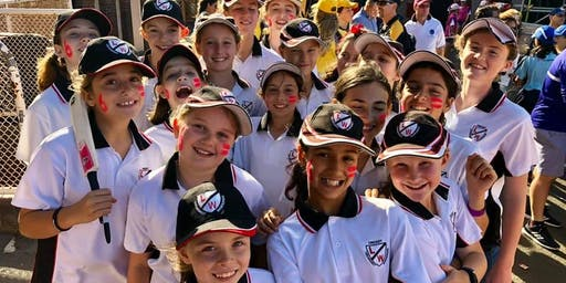 Girls Cricket Q&A and Engagement hosted by Leichhardt Wanderers