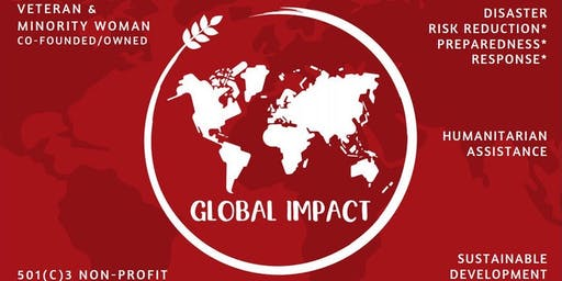 Global Impact NGO Meeting & Training