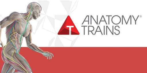 Anatomy Trains in Motion