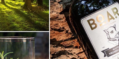 Walk & GIN by NaturPur Events (BOAR GIN) tickets