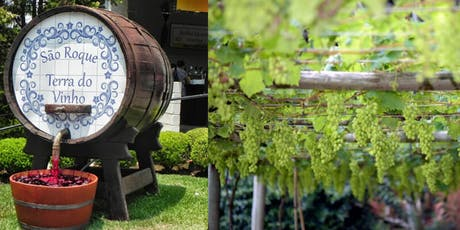 Excursão Rota do Vinho São Roque - Dezembro 2019 ingressos