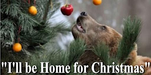 """Bruin Blast 2019 """"I'll be home for Christmas"""""""