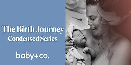 The Birth Journey 3-Week Condensed Series: Saturdays 2/29-3/7 tickets