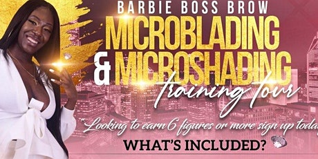 Microshading/Ombré Brow Training Course - $699 tickets
