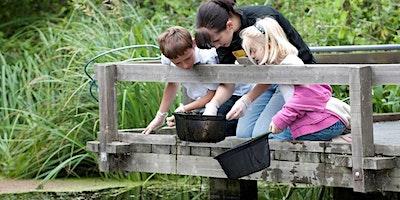 RSPB Easter Holidays – Wild Wednesdays (Pond Dipping)