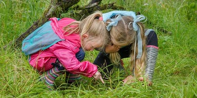 RSPB Easter Holidays - Toddler Friday Morning (Bug Safari)
