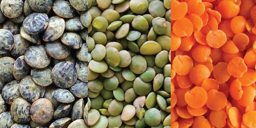 Lentils Three Ways