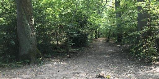 Family Woodland Walk