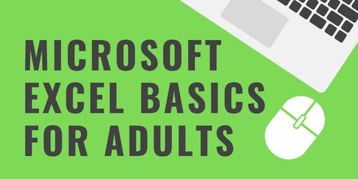 Microsoft Excel Basics for Adults