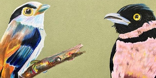 Drawing Birds in Colored Pencil