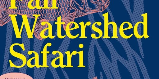 Fall Watershed Safari
