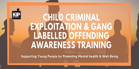 Child Criminal Exploitation & Gang Labelled Offending Awareness tickets