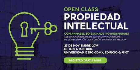 Open class: Propiedad intelectual entradas
