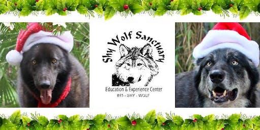 Santa Paws Photos benefiting Shy Wolf Sanctuary