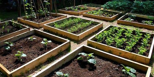 Raised Garden Bed Design Workshop