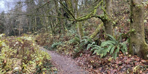 Fat Girls Hiking, Seattle:  Carkeek Park, Piper's Creek Trail