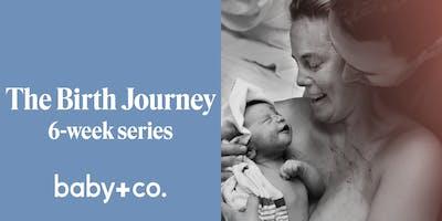 The Birth Journey 6-Week Series: Wednesdays, 3/11-4/15