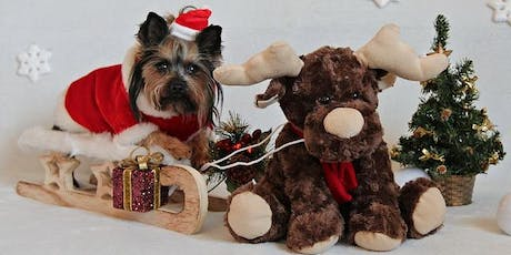 Santa Paws Photo Shoot & Hot Chocolate Bar tickets