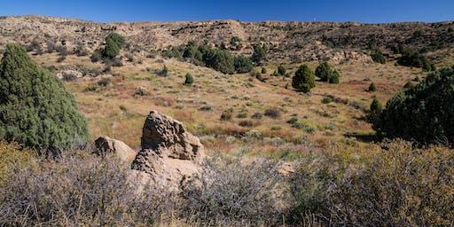 TOSC Members Hike - Jimmy Camp Creek Dec 2