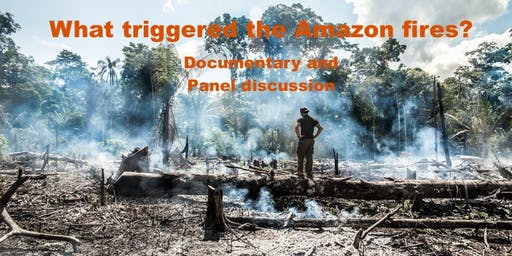 What Triggered the Amazon Fires? Film screening and panel discussion